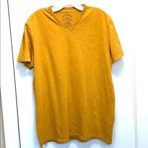 Mens American Eagle Outfitters T- shrit